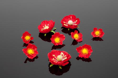 Flowers Фото со стока