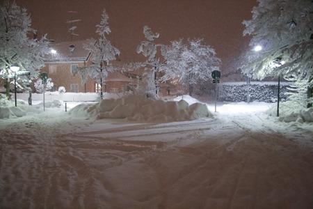 Winter scene in the night