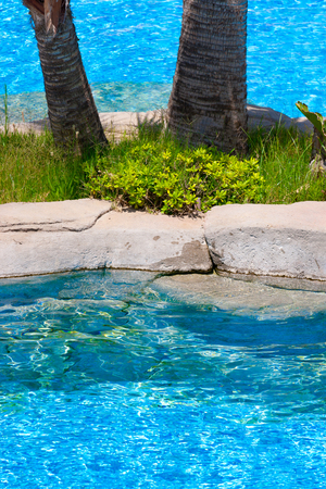 Swimming pool in the hotel 免版税图像