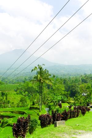 Beautiful Asian Landscape Stock Photo
