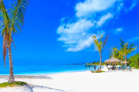 Dreamscape Escape On Maldives