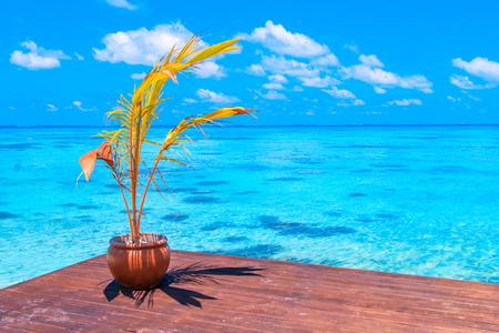 Tropical beach Imagens