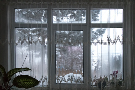 Look out the window - Winter landscape