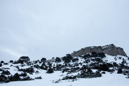 Winter Landscape with mini Car