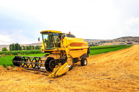 Harvester on the field Stock Photo