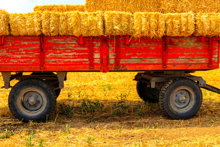 Hay wagon with hay bales on wheat field