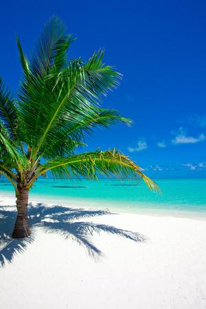 Holiday Island