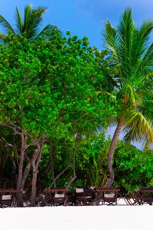Tropical white sand beach Archivio Fotografico