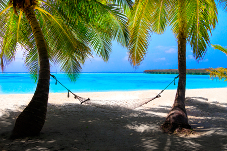 White dream beach with palm trees and hammock in front of turquoise ocean