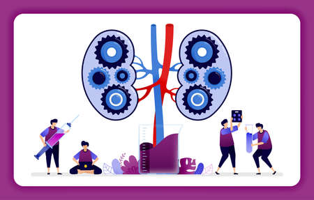 design illustration for kidney disease and treatment. mechanisms in the kidney for laboratory research and education.