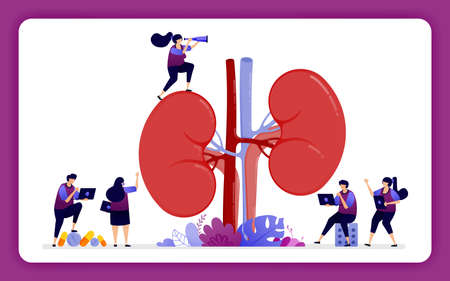 design illustration for kidney disease and treatment. anatomy of the kidney for medical, props and health education.
