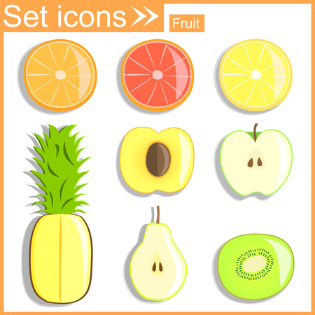 sectional: Fruits sectional, vector illustration