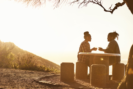 Couple sitting at a table watching sunset at a public viewing point while making a toast with some alcoholic drinks during golden hour, their silhouettes sitting under a tree. Reklamní fotografie - 80171605