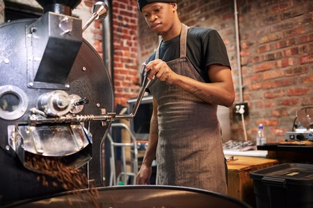 Black worker busy pulling the lever that pours the coffee beans from the roaster over to a drying tray where they will cool down before being packaged and shipped off. Reklamní fotografie