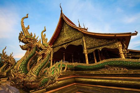 according: Naga. according to the belief of buddhist. Stock Photo