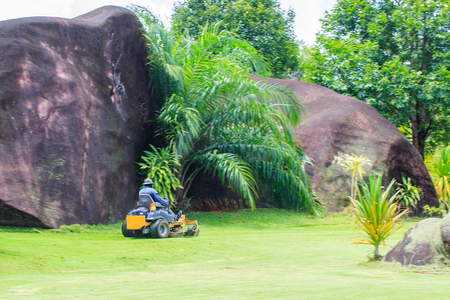The man driving a riding lawn mower in natural garden.