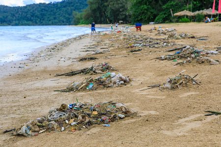 Lots of trash blow from  sea to the beach.