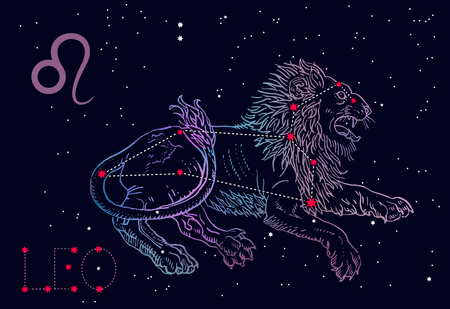 Leo zodiac sign and constellation. Lying lion on a cosmic blue background with stars. Horoscope astrology, astronomy, fantasy, mythology. Vintage engraving tattoo style hand drawn vector illustration. Illustration