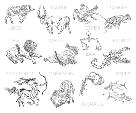 Constellations, zodiac signs, horoscope. Aries, Taurus, Gemini, Cancer, Leo, Virgo, Libra, Scorpio, Sagittarius, Capricorn, Aquarius, Pisces. Vintage engraving tattoo style drawings isolated on white.