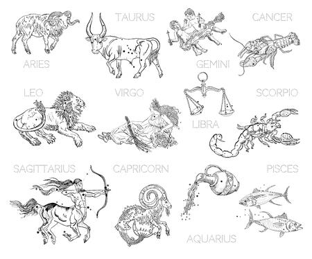 Constelaciones, signos del zodíaco, horóscopo. Aries, Tauro, Géminis, Cáncer, Leo, Virgo, Libra, Escorpio, Sagitario, Capricornio, Acuario, Piscis. Dibujos de estilo de tatuaje de grabado vintage aislados en blanco. Ilustración de vector