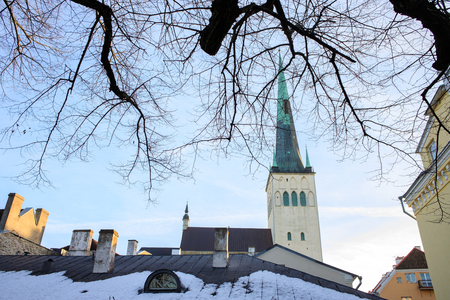 View of St. Olaf s or Oleviste church among the rooftops in Tallinn old town. Landmark of Estonia. Europe tourist attractions. Baltic states.