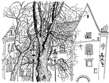 Tallinn Old Town view. Olevimagi street. Hand drawn graphic style ink pen illustration. Historical architecture, medieval houses, trees. Baltic states landmark. Postcard, coloring page.