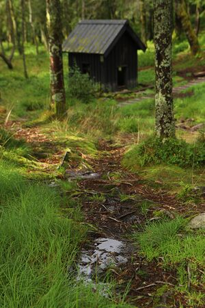 Forest path and wooden house on Mount Floyen. Bergen, Hordaland, Norway. Northern woods.