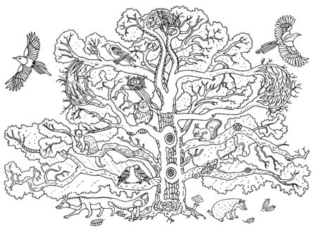 Cute animals on the oak tree : magpie, crow, owl, starling, ferret, squirrel, badger, fox. Branches, leaves and mushrooms. Environment, nature. Hand drawn illustration. Coloring book page, postcard.