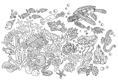 Undersea world : Environment, nature, sea, ocean. Hand drawn illustration. Coloring book page, postcard.