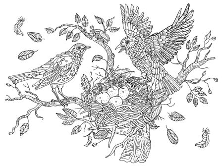 Birds nests on the branches of a tree. Leaves, feathers, wings, eggs. Environment, nature, pring. Hand drawn illustration. Cute anti stress coloring book page, postcard.