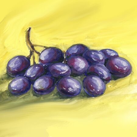 Watercolor hand drawn illustration with grapes.