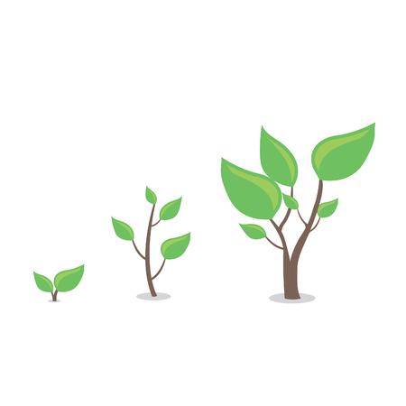 성장하는 만화 식물 일러스트