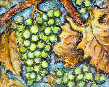 Painting of organic ripe white grapes in a vineyard. Stock Photo