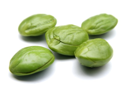 Petai, Bitter beans On White Backgound Stock Photo - 16419662