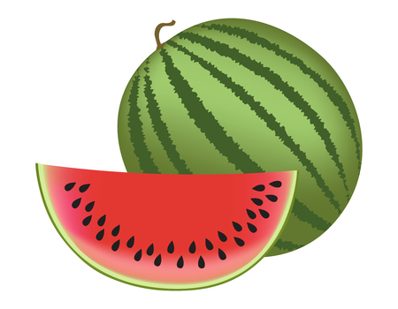 watermelon: Illustration of a watermelon and slice isolated on white background Illustration