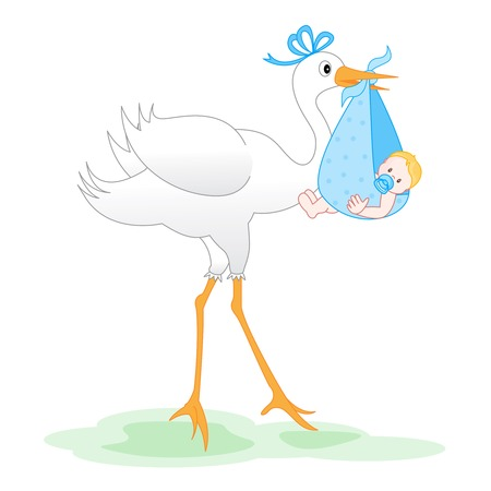 stork delivering a baby: Illustration of a stork delivering a bundled newborn baby boy isolated on white