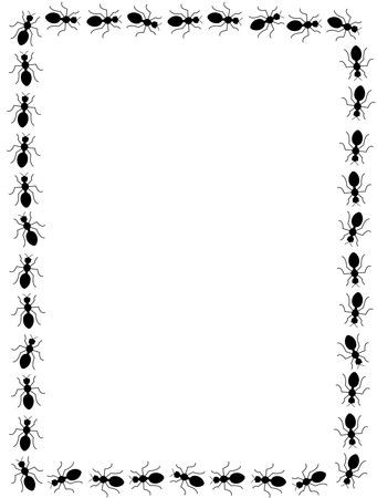 Black ants frame on white background