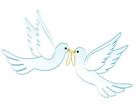 Illustrazione di due bianchi piccioni / colombe che trasportano due anelli d'oro isolato su sfondo bianco Archivio Fotografico - 38546164
