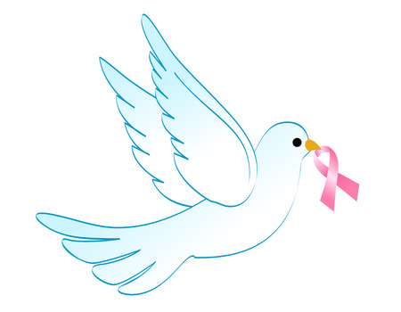 breast cancer awareness: Flying white dove with breast cancer awareness pink ribbon illustration isolated on white Illustration