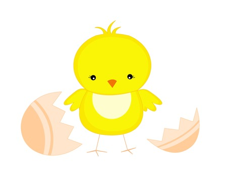 Cute little newborn easter chick with an egg isolated on white background Vector