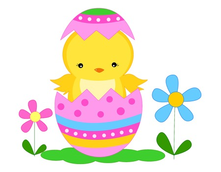 Colorful illustration of a chick and painted  decorated broken easter egg isolated on white backgrond Vector