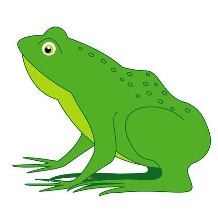 froggy: Cute frog clip art isolated on white background