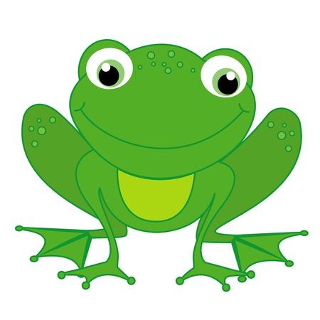 rana caricatura: Ilustración de una pequeña rana feliz linda aislada en el fondo blanco