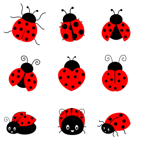 lady beetle: Cute colorful ladybugs clipart collection isolated on white background