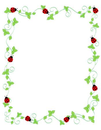 Cute ladybugs on green ivy frame / border isolated on white background Illustration