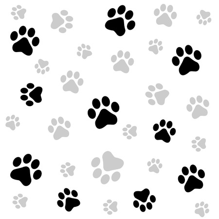 dog track: Dog paw print seamless pattern on white background