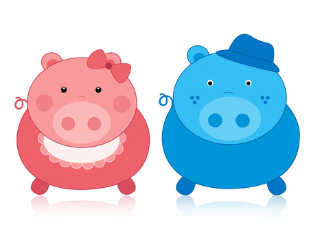 male and female: Cute pink and blue male  female pigs illustration isolated on white background illustration