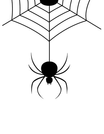 Isolated spider web with spider illustration. Illustration