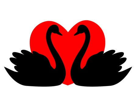 wedlock: Swan couple in love illustration  clipart isolated on red heart background. Can use as wedding invitation cards , wedding  love related designs and logo