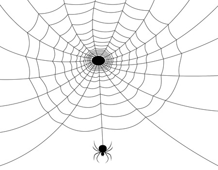 spider web: Isolated spider web with spider illustration. Illustration